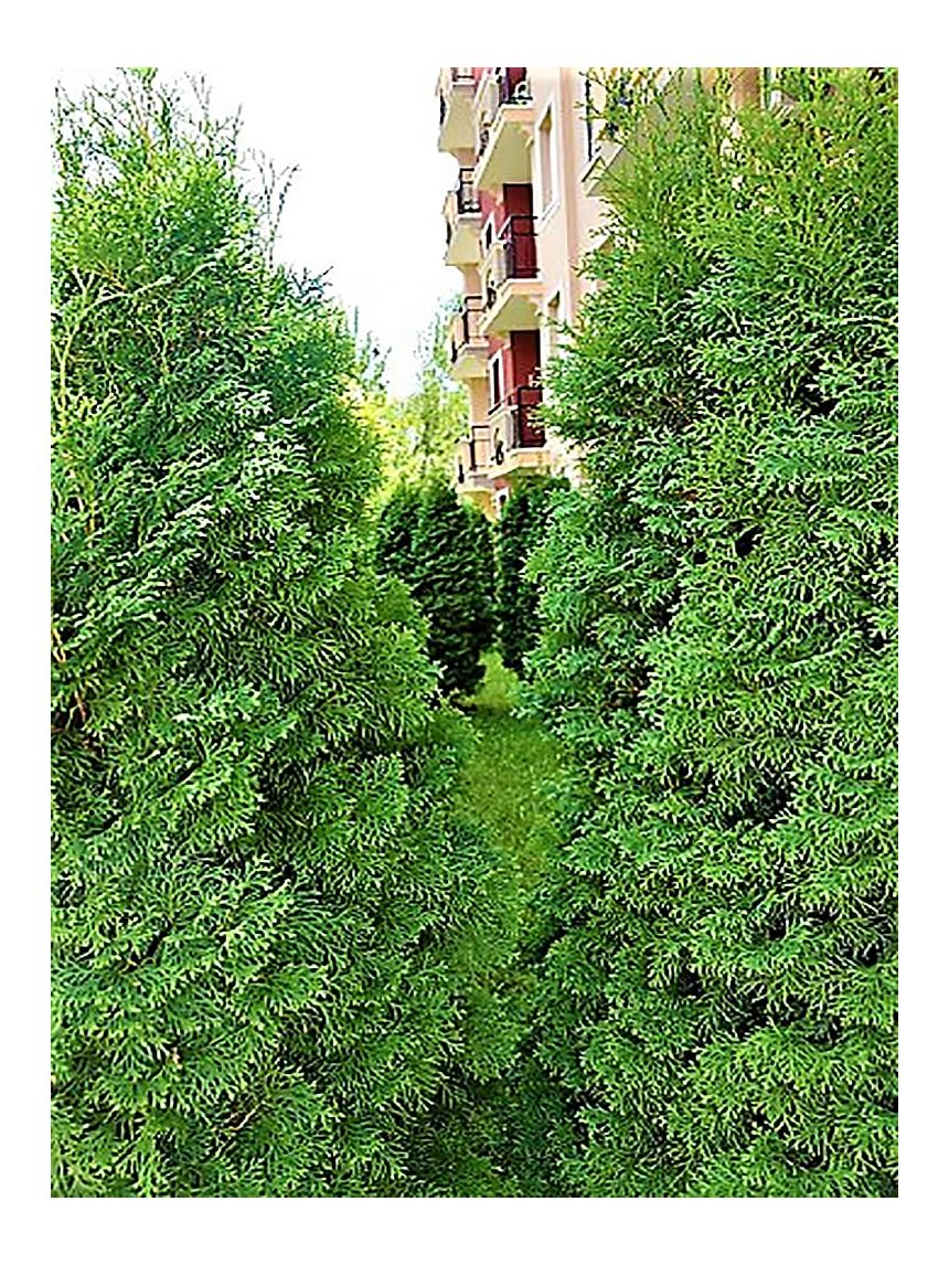 ID236 Трехкомнатные апартаменты в комплексе ВиП Зона